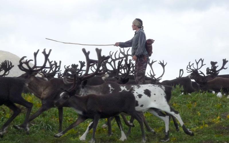 esso und indigene v246lker kamtschatka land der vulkane